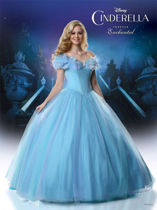 Disney Forever Enchanted Cinderella Keepsake Gown Prom Dress