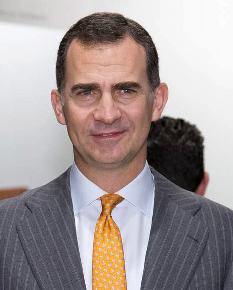 King Felipe VI of Spain is the winner in Most Stylish Men 2015 - Category Politics