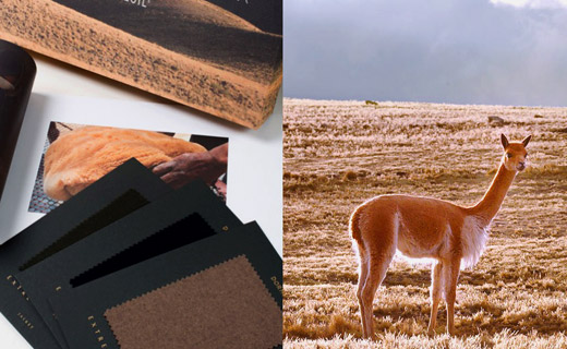 Dormeuil Ultimate Luxury - Extreme Vicuna Collection