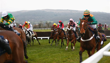 Don't Miss out on the Opportunity of Attending Cheltenham Festival