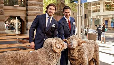 Australia celebrates campaign for wool 2016