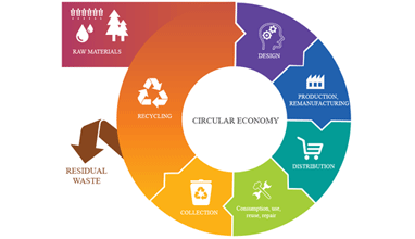 What Exactly is the Circular Economy and How Can Consumers Be Part of It?
