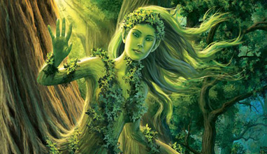 Who are the Dryads